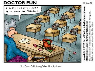 Doctorfunsquirrelsschool_1